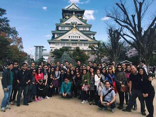 Viventis at Japan